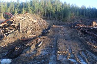 Steep slope soil loss
